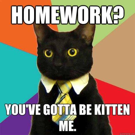 homeworkkitten