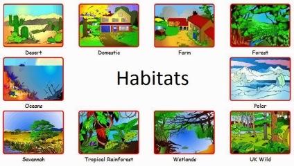 habitats2