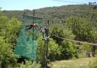 alex and d on zipline platform